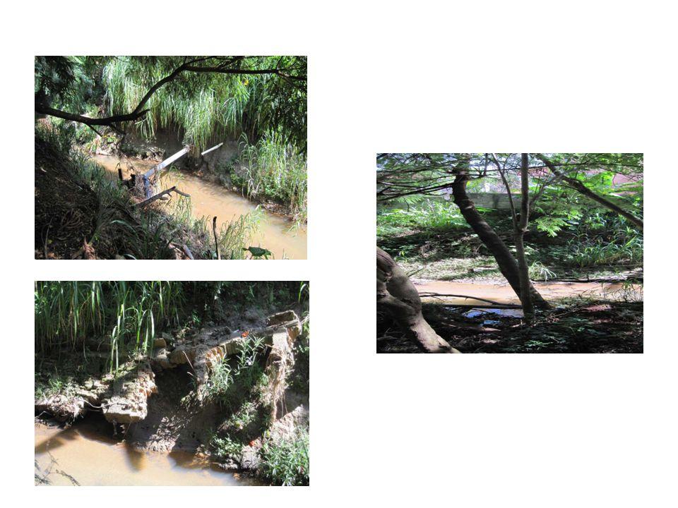 Diagnóstico O Parque Linear do Ribeirão das Pedras configura um projeto desenvolvido pela Prefeitura de Campinas, envolvendo parcerias com as universidades, sociedade civil, iniciativa privada e Ministério Público.