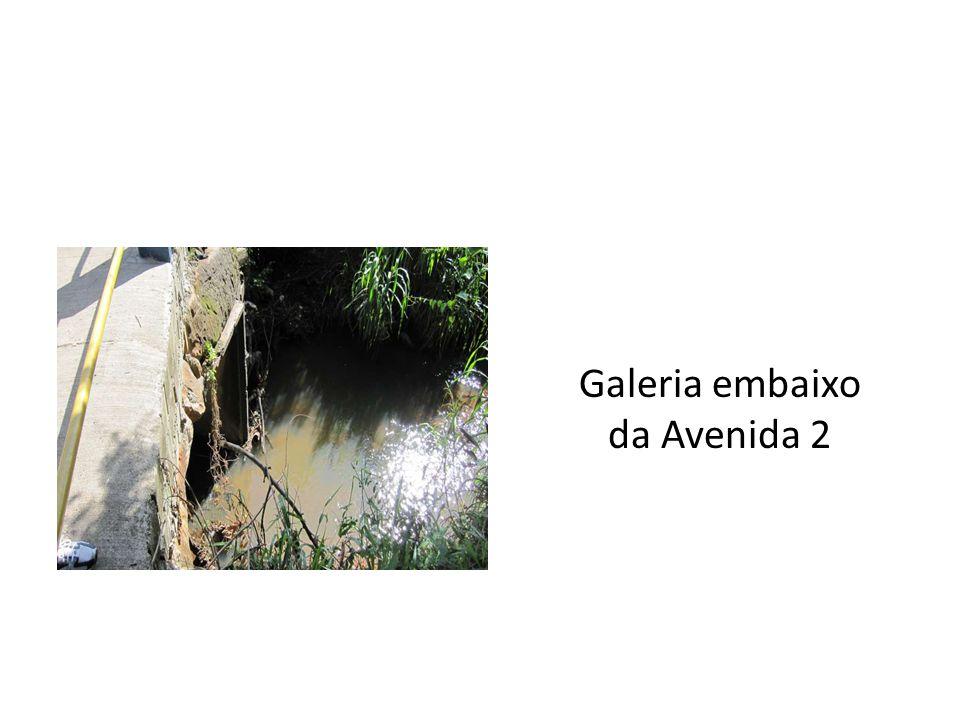Diagnóstico O Ribeirão das Pedras é afluente da margem esquerda do Ribeirão das Anhumas, o qual é afluente do rio Atibaia, que constitui num dos formadores do rio Piracicaba, na bacia do rios Tietê / Paraná.
