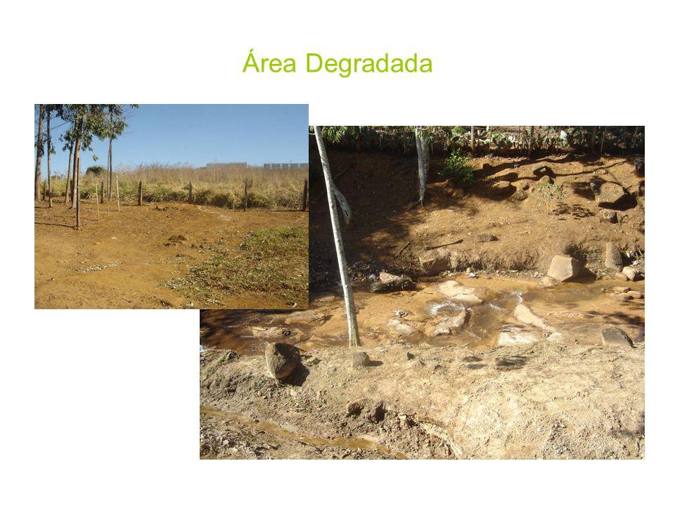 Área Degradada