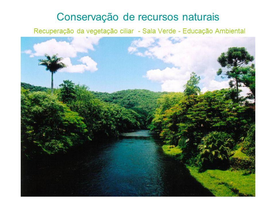 Conservação de recursos naturais Recuperação da vegetação ciliar - Sala Verde - Educação Ambiental