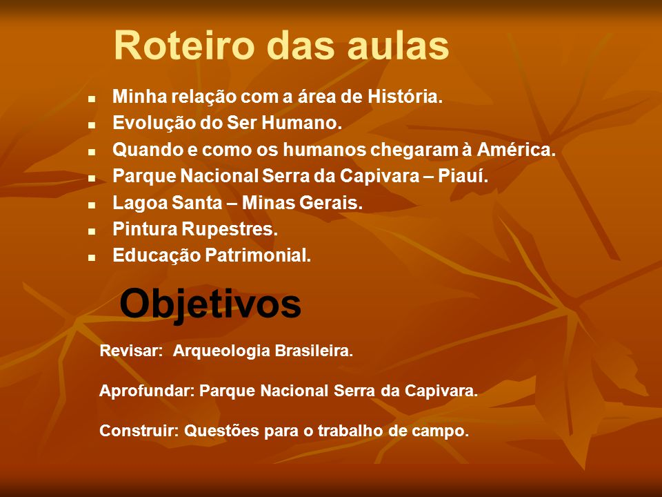 As pinturas dos sítios da região do Parque Nacional da Serra da Capivara são muito diversificadas tanto na temática e na técnica de realização quanto na maneira com as figuras estão dispostas sobre a parede.