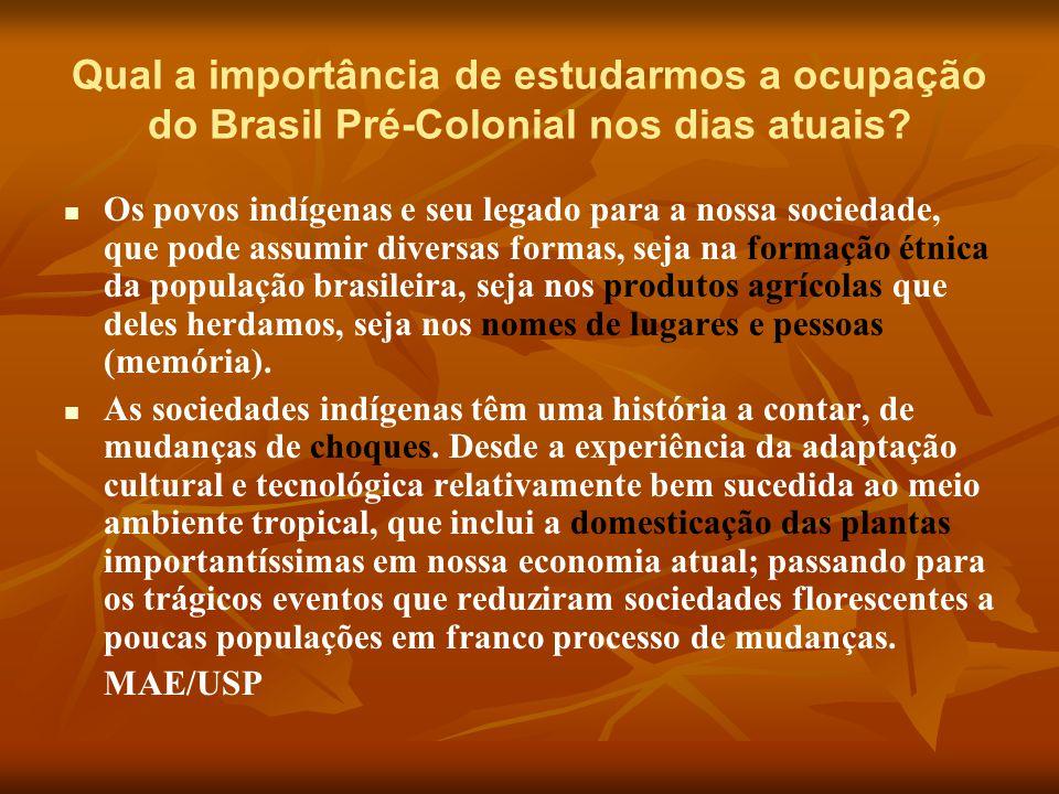 Qual a importância de estudarmos a ocupação do Brasil Pré-Colonial nos dias atuais? Os povos indígenas e seu legado para a nossa sociedade, que pode a