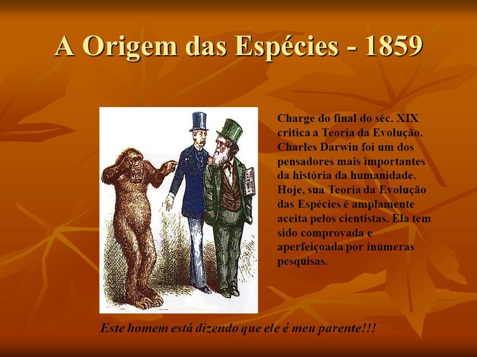 A Origem das Espécies - 1859 Este homem está dizendo que ele é meu parente!!! Charge do final do séc. XIX critica a Teoria da Evolução. Charles Darwin