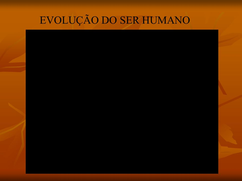 EVOLUÇÃO DO SER HUMANO