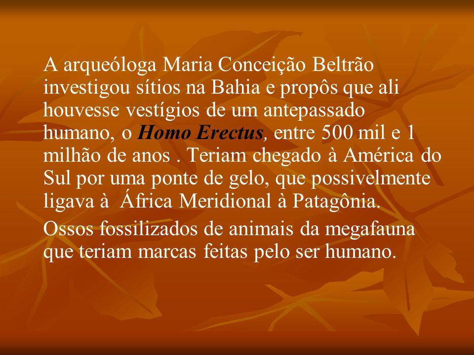 A arqueóloga Maria Conceição Beltrão investigou sítios na Bahia e propôs que ali houvesse vestígios de um antepassado humano, o Homo Erectus, entre 50