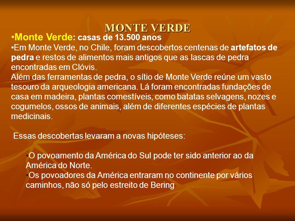 MONTE VERDE Monte Verde : casas de 13.500 anos Em Monte Verde, no Chile, foram descobertos centenas de artefatos de pedra e restos de alimentos mais a
