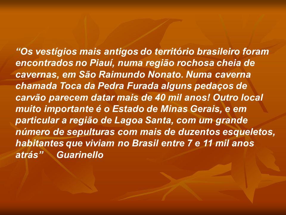"""""""Os vestígios mais antigos do território brasileiro foram encontrados no Piauí, numa região rochosa cheia de cavernas, em São Raimundo Nonato. Numa ca"""