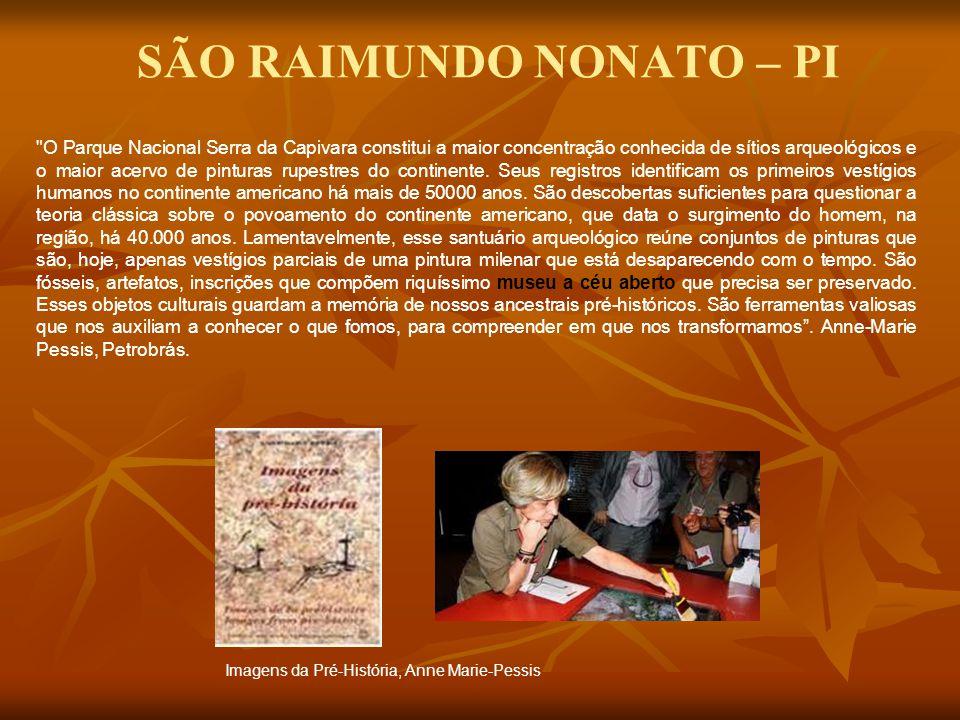 O Parque Nacional Serra da Capivara constitui a maior concentração conhecida de sítios arqueológicos e o maior acervo de pinturas rupestres do continente.
