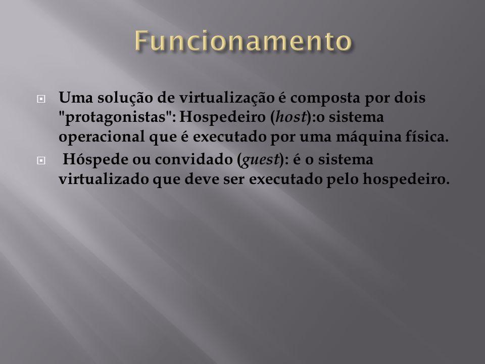  Uma solução de virtualização é composta por dois