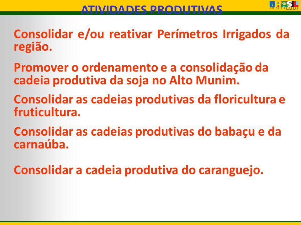 ATIVIDADES PRODUTIVAS Consolidar e/ou reativar Perímetros Irrigados da região. Promover o ordenamento e a consolidação da cadeia produtiva da soja no