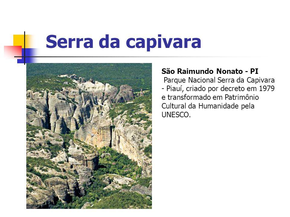 Serra da capivara São Raimundo Nonato - PI Parque Nacional Serra da Capivara - Piauí, criado por decreto em 1979 e transformado em Patrimônio Cultural
