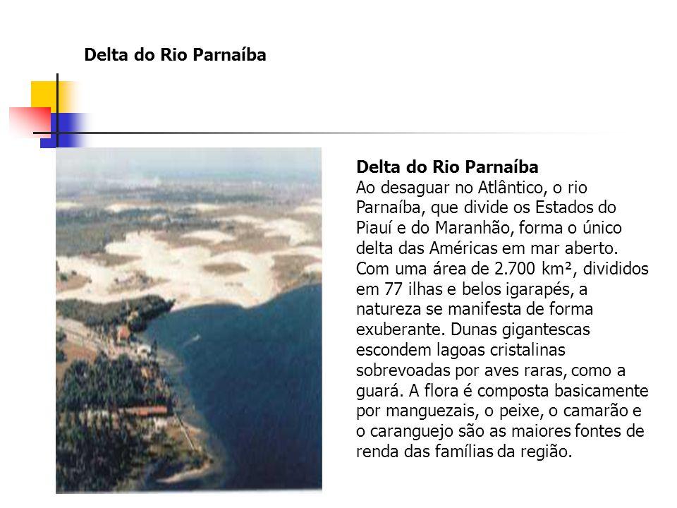 Delta do Rio Parnaíba Delta do Rio Parnaíba Ao desaguar no Atlântico, o rio Parnaíba, que divide os Estados do Piauí e do Maranhão, forma o único delt