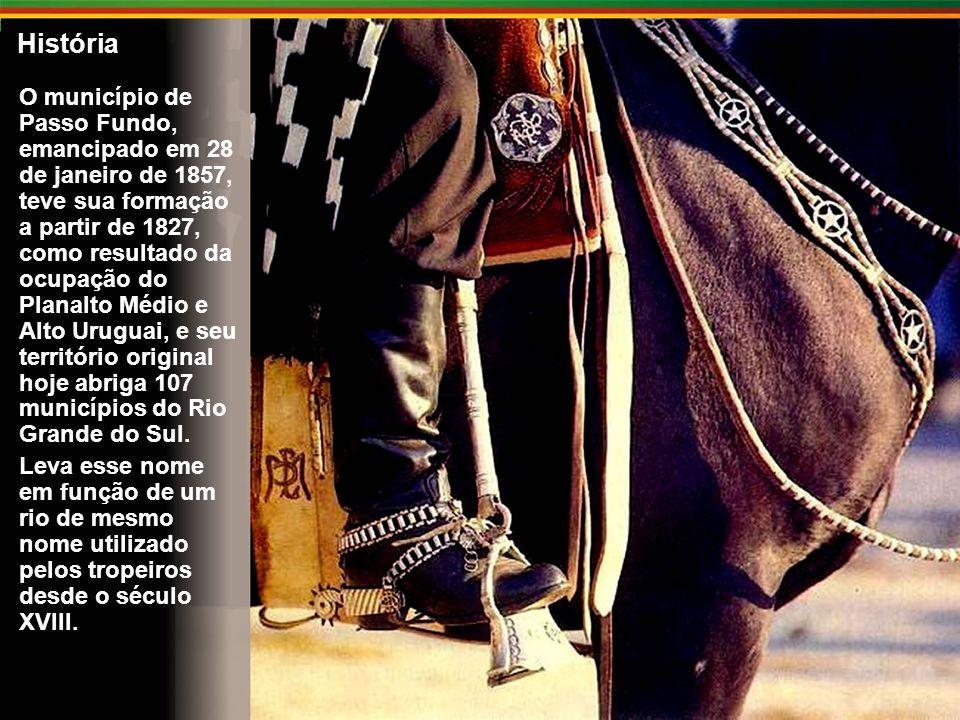 História O município de Passo Fundo, emancipado em 28 de janeiro de 1857, teve sua formação a partir de 1827, como resultado da ocupação do Planalto Médio e Alto Uruguai, e seu território original hoje abriga 107 municípios do Rio Grande do Sul.