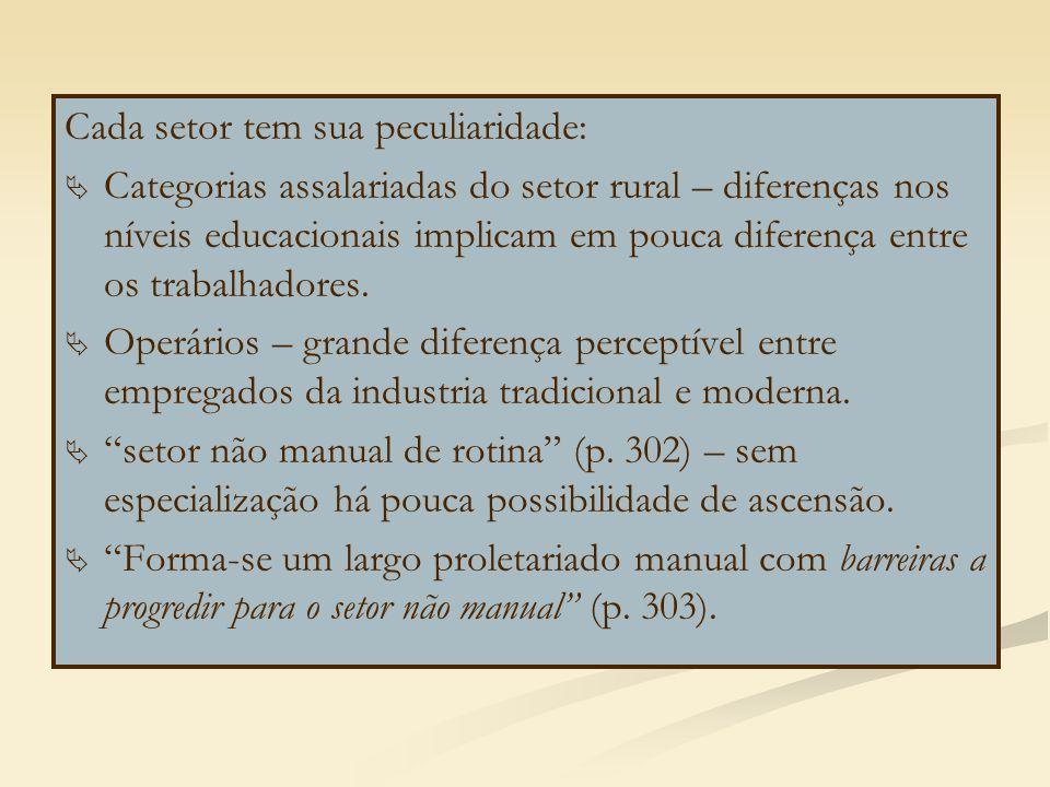 Cada setor tem sua peculiaridade:   Categorias assalariadas do setor rural – diferenças nos níveis educacionais implicam em pouca diferença entre os