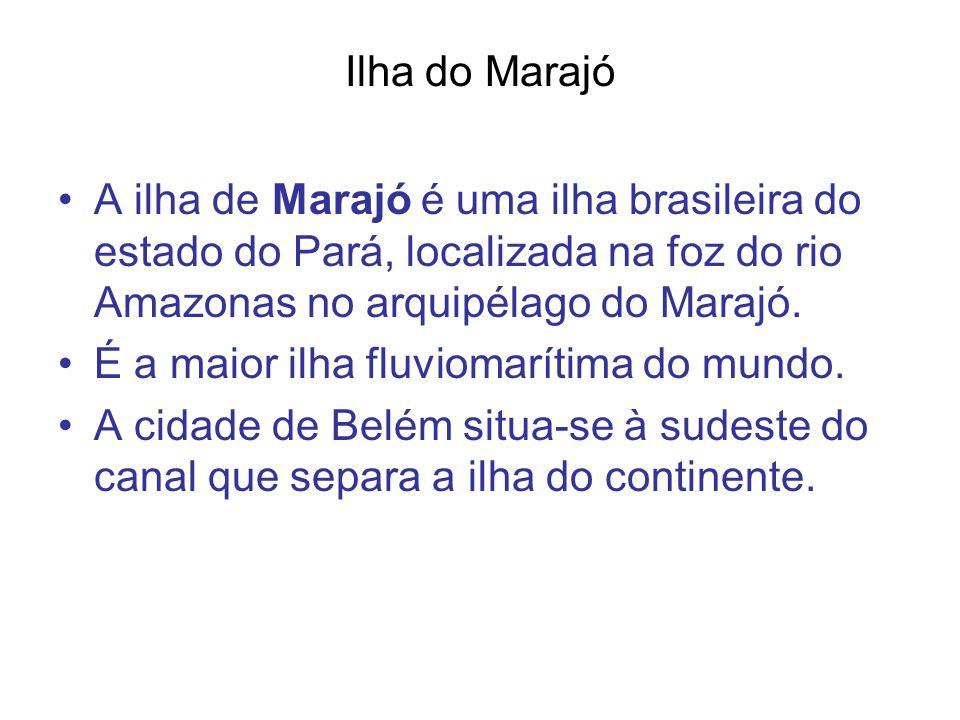 Ilha do Marajó A ilha de Marajó é uma ilha brasileira do estado do Pará, localizada na foz do rio Amazonas no arquipélago do Marajó. É a maior ilha fl