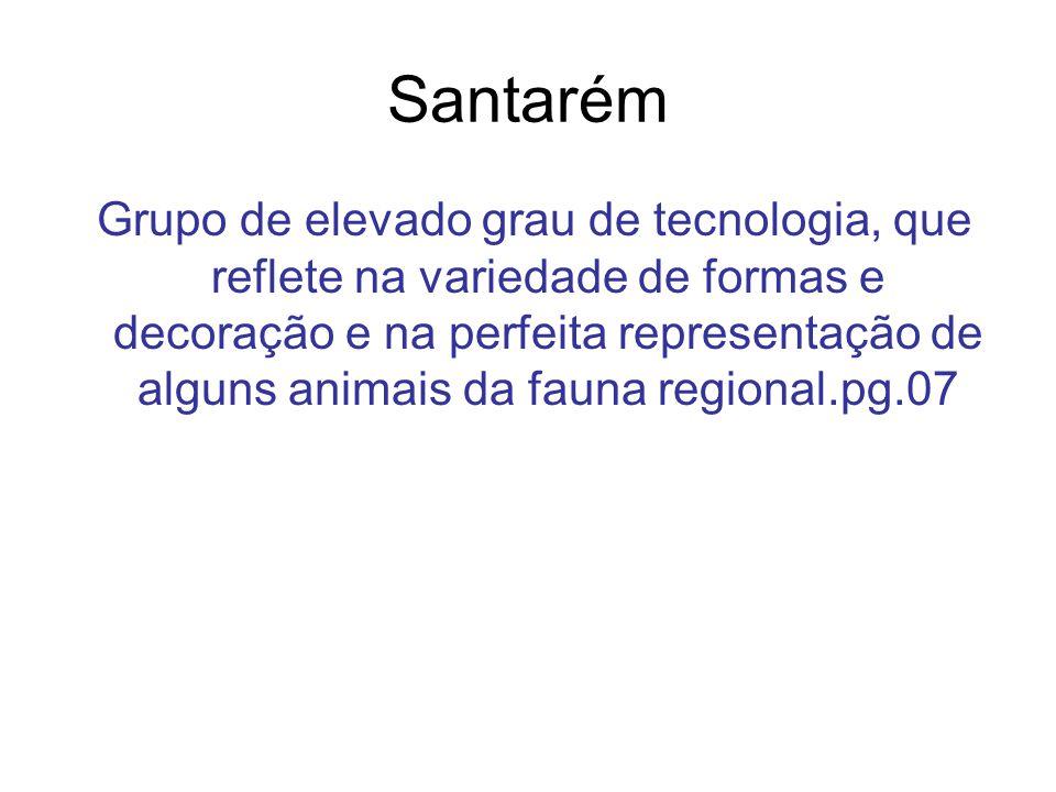 Santarém Grupo de elevado grau de tecnologia, que reflete na variedade de formas e decoração e na perfeita representação de alguns animais da fauna re