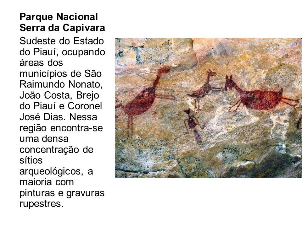 Parque Nacional Serra da Capivara Sudeste do Estado do Piauí, ocupando áreas dos municípios de São Raimundo Nonato, João Costa, Brejo do Piauí e Coron