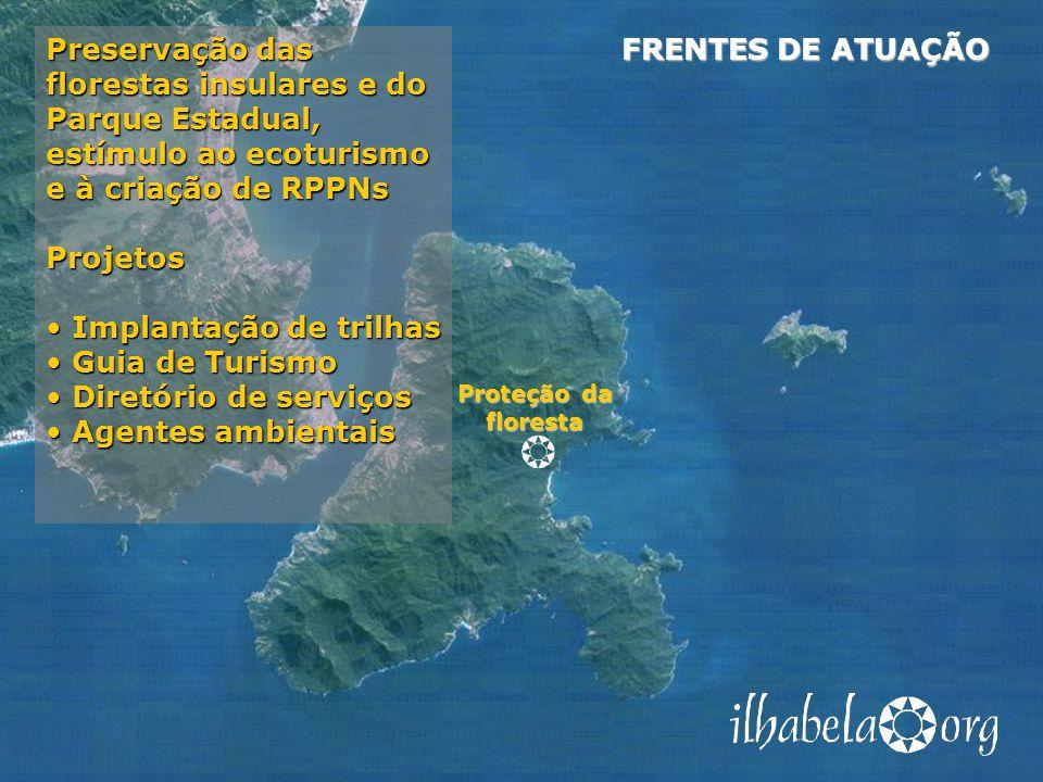 Proteção da floresta FRENTES DE ATUAÇÃO Preservação das florestas insulares e do Parque Estadual, estímulo ao ecoturismo e à criação de RPPNs Projetos Implantação de trilhas Implantação de trilhas Guia de Turismo Guia de Turismo Diretório de serviços Diretório de serviços Agentes ambientais Agentes ambientais