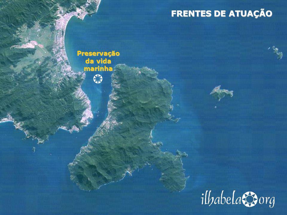 Preservação da vida marinha FRENTES DE ATUAÇÃO Combate a vazamentos de petróleo, monitoramento de esgotos, coleta de lixo nas costeiras, educação ambiental de proprietários de embarcações Projetos Plano de contingência contra vazamentos de petróleo Plano de contingência contra vazamentos de petróleo