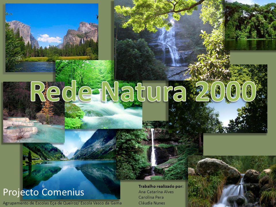 A Rede Natura 2000 é uma rede de áreas designadas para conservar os habitats e as espécies selvagens raras, ameaçadas ou vulneráveis na União Europeia.