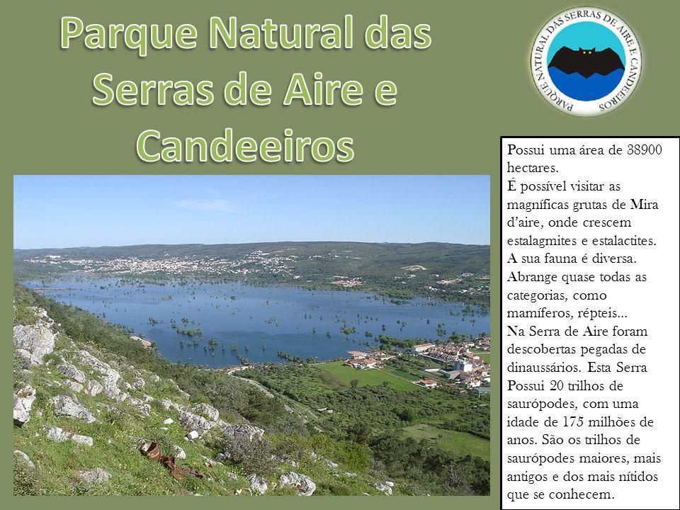 Possui uma área de 38900 hectares.