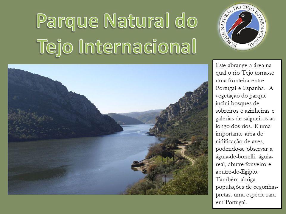 Este abrange a área na qual o rio Tejo torna-se uma fronteira entre Portugal e Espanha.