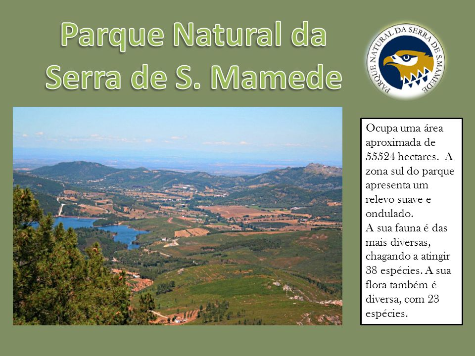 Ocupa uma área aproximada de 55524 hectares.