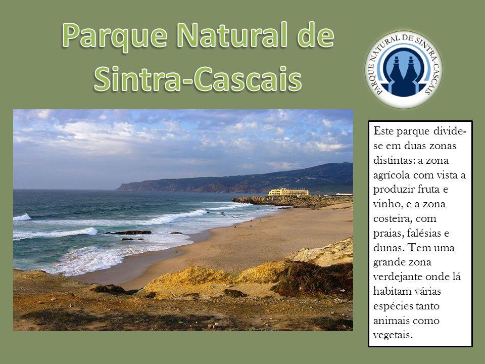 Este parque divide- se em duas zonas distintas: a zona agrícola com vista a produzir fruta e vinho, e a zona costeira, com praias, falésias e dunas.