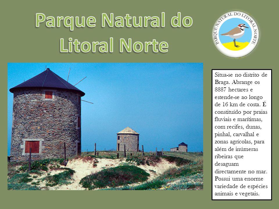 É uma zona húmida de importância internacional como habitat de aves aquáticas.
