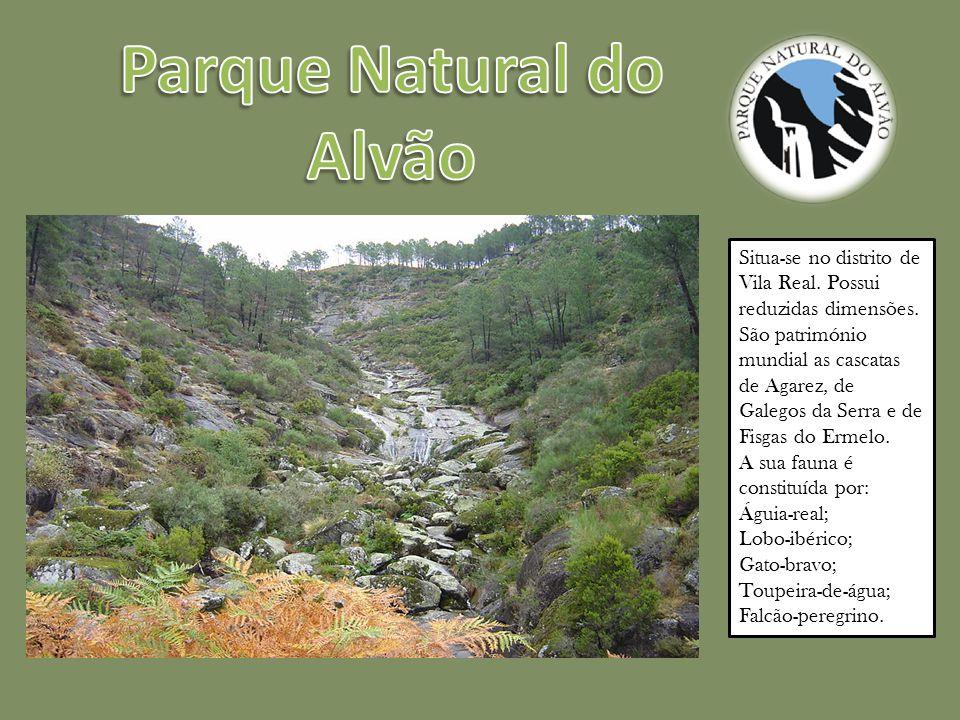 Situa-se no distrito de Vila Real.Possui reduzidas dimensões.