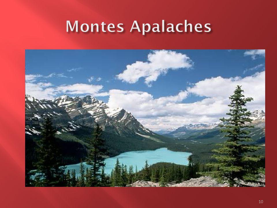  O leste do Canadá é ao mesmo tempo o domínio da região dos apalaches, das planícies dos Grandes Lagos e Santo-Laurent  A região dos apalaches engloba a ilha de Terra-Novo, a Nova Escócia, o Novo Brunswich e o Île-du-Prince- Éduard, bem como o Quebec.