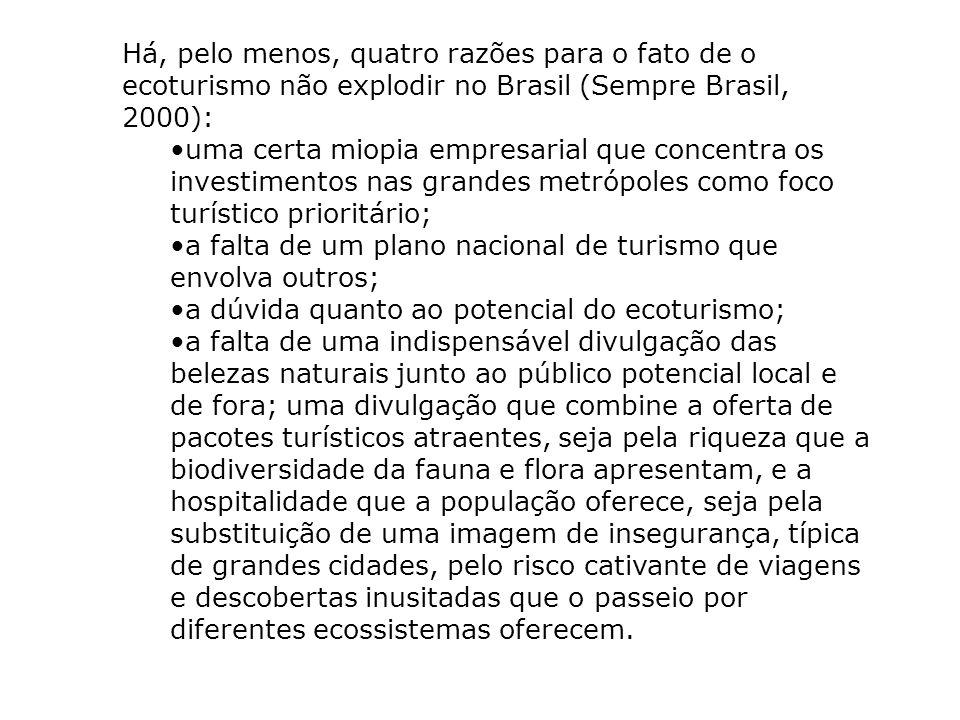 Há, pelo menos, quatro razões para o fato de o ecoturismo não explodir no Brasil (Sempre Brasil, 2000): uma certa miopia empresarial que concentra os