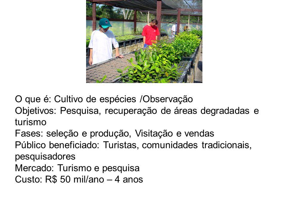 O que é: Cultivo de espécies /Observação Objetivos: Pesquisa, recuperação de áreas degradadas e turismo Fases: seleção e produção, Visitação e vendas