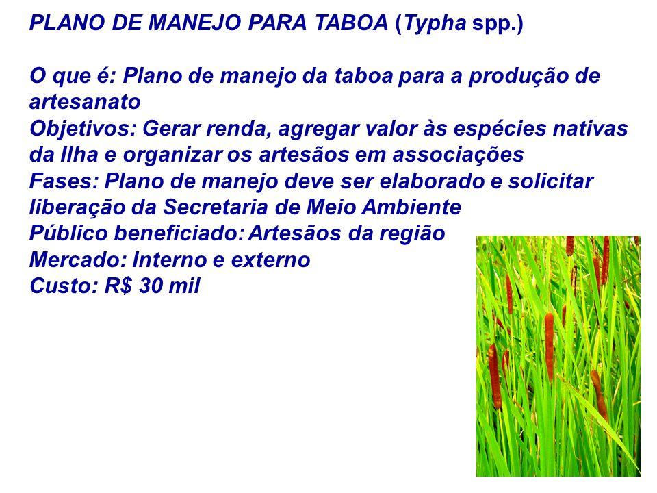 PLANO DE MANEJO PARA TABOA (Typha spp.) O que é: Plano de manejo da taboa para a produção de artesanato Objetivos: Gerar renda, agregar valor às espéc
