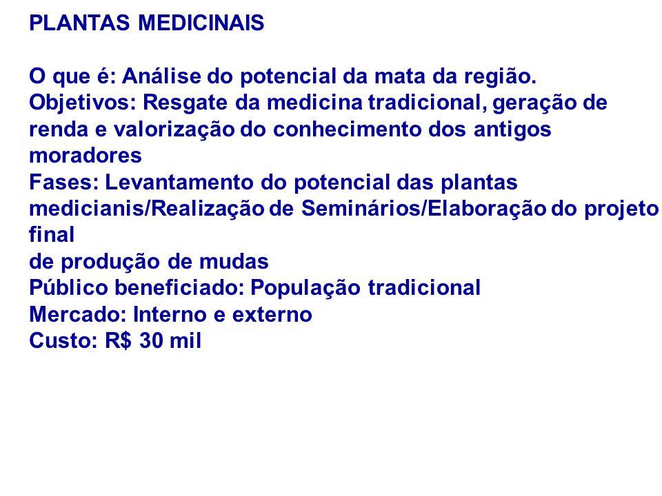 PLANTAS MEDICINAIS O que é: Análise do potencial da mata da região. Objetivos: Resgate da medicina tradicional, geração de renda e valorização do conh