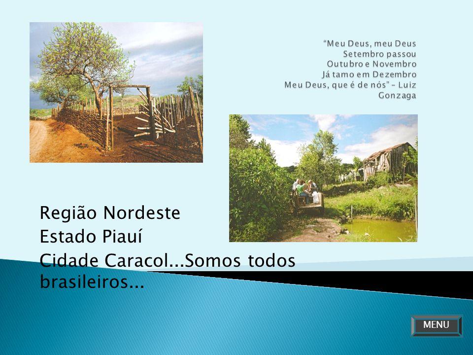 Região Nordeste Estado Piauí Cidade Caracol...Somos todos brasileiros... MENU