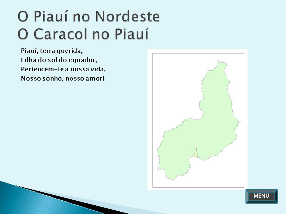 Piauí, terra querida, Filha do sol do equador, Pertencem-te a nossa vida, Nosso sonho, nosso amor! MENU