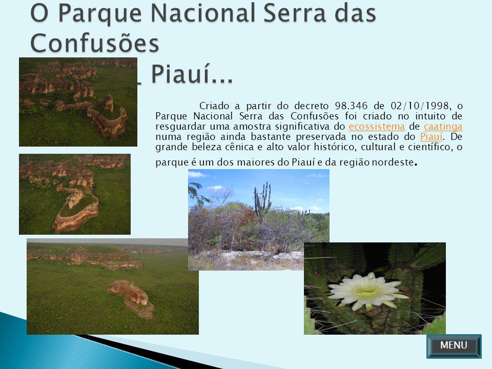 Criado a partir do decreto 98.346 de 02/10/1998, o Parque Nacional Serra das Confusões foi criado no intuito de resguardar uma amostra significativa d