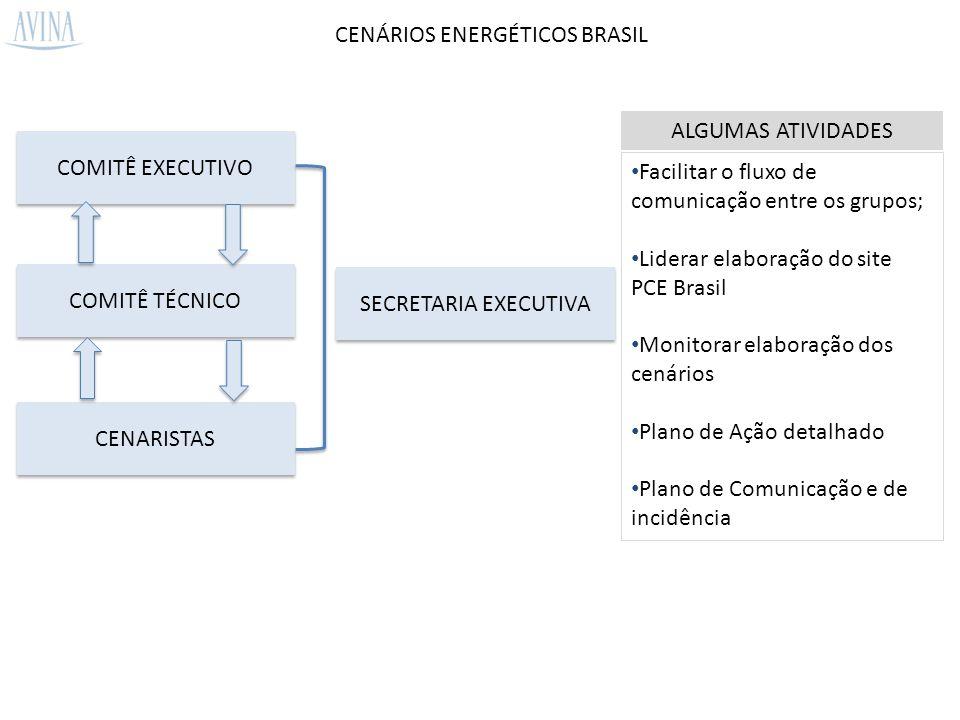CENÁRIOS ENERGÉTICOS BRASIL COMITÊ EXECUTIVO COMITÊ TÉCNICO CENARISTAS SECRETARIA EXECUTIVA Facilitar o fluxo de comunicação entre os grupos; Liderar elaboração do site PCE Brasil Monitorar elaboração dos cenários Plano de Ação detalhado Plano de Comunicação e de incidência ALGUMAS ATIVIDADES