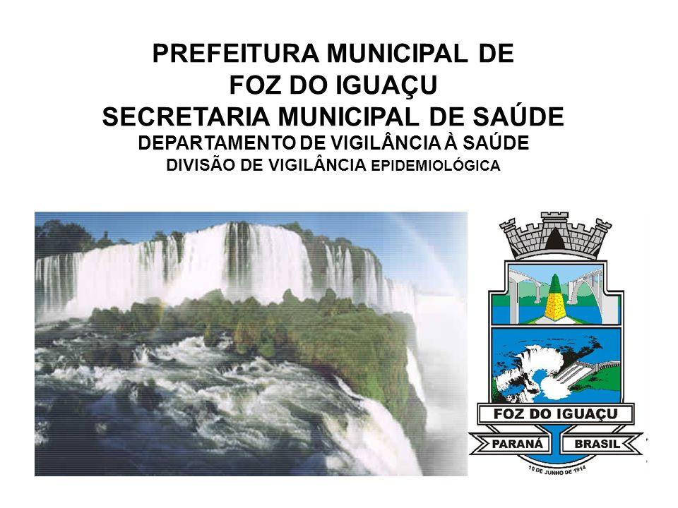 PREFEITURA MUNICIPAL DE FOZ DO IGUAÇU SECRETARIA MUNICIPAL DE SAÚDE DEPARTAMENTO DE VIGILÂNCIA À SAÚDE DIVISÃO DE VIGILÂNCIA EPIDEMIOLÓGICA