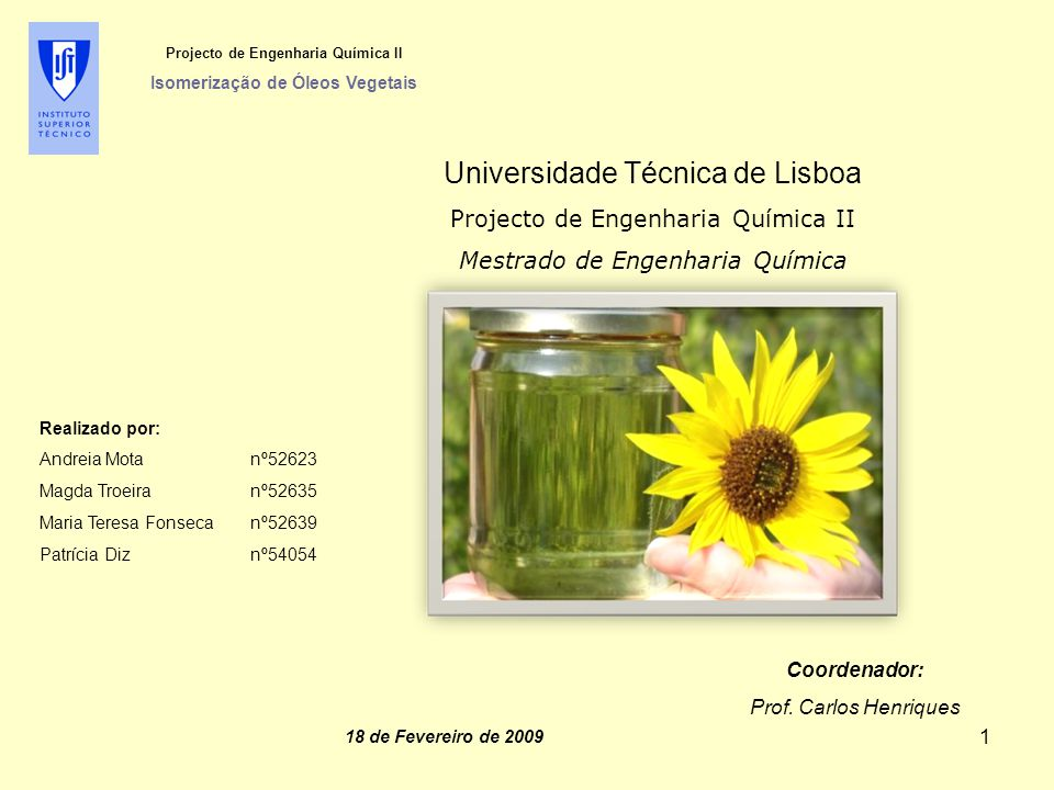 Projecto de Engenharia Química II Isomerização de Óleos Vegetais  Taxa Interna de Rentabilidade (TIR): TIR = 54,3% > i = 4,21%  Ratios: Investimento Favorável 62