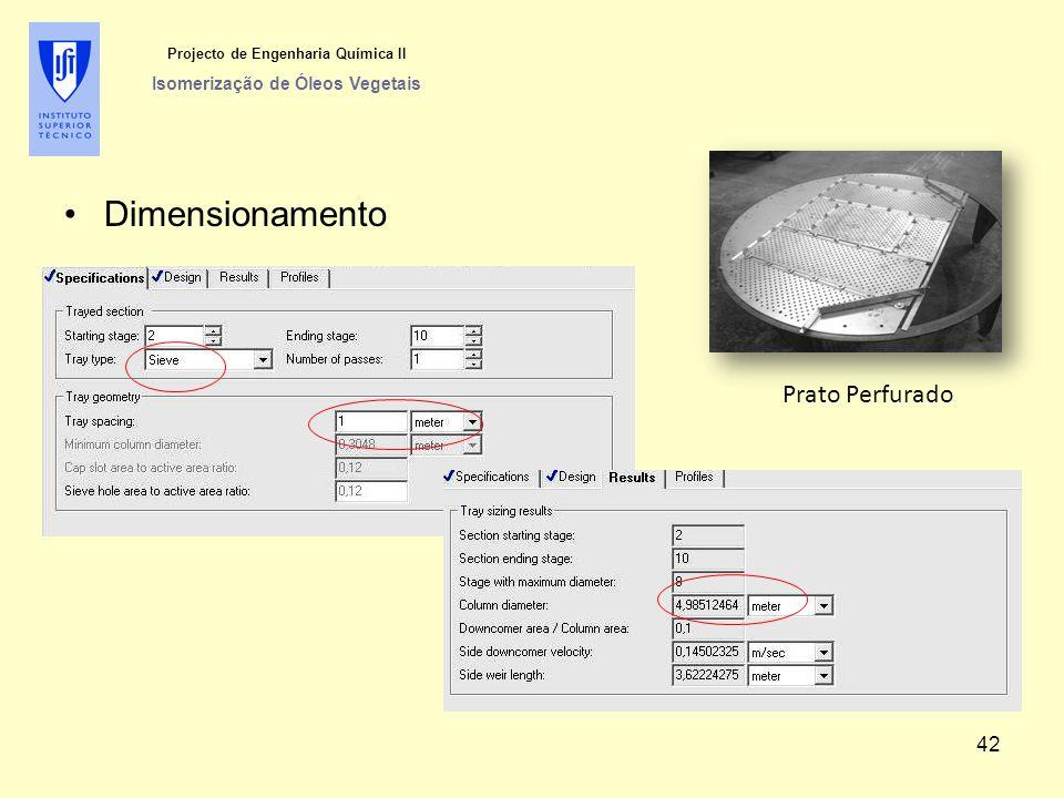 Projecto de Engenharia Química II Isomerização de Óleos Vegetais Dimensionamento Prato Perfurado 42