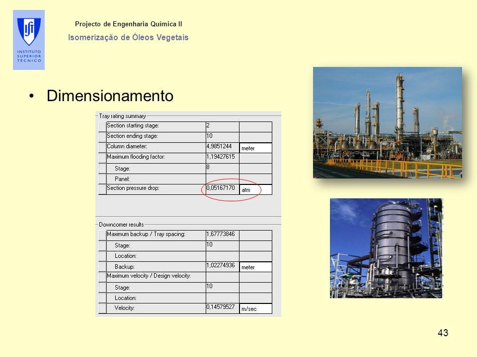 Dimensionamento Projecto de Engenharia Química II Isomerização de Óleos Vegetais 43