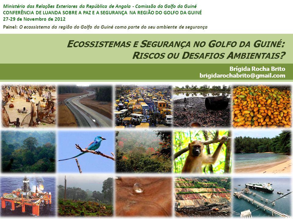 DesflorestaçãoProdução agrícolaPerda de habitats Captura de espécies ConsumoComercialização Extração de recursos naturais Transformação Urbanização Produção de resíduos Degradação de ecossistemas (S OBRE ) C ARGA A MBIENTAL