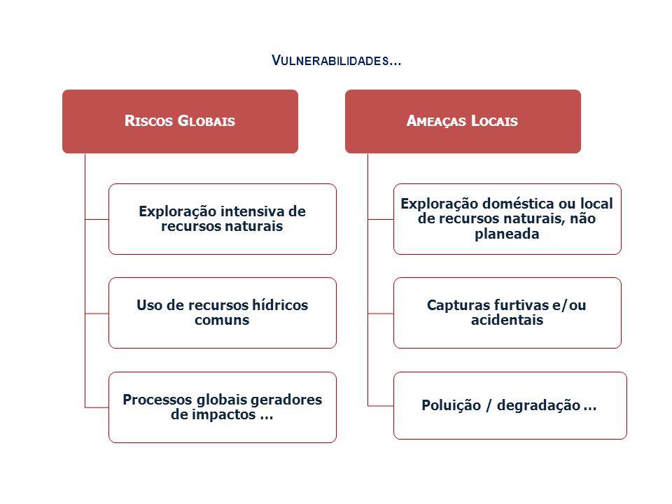 V ULNERABILIDADES... R ISCOS G LOBAIS Exploração intensiva de recursos naturais Uso de recursos hídricos comuns Processos globais geradores de impacto