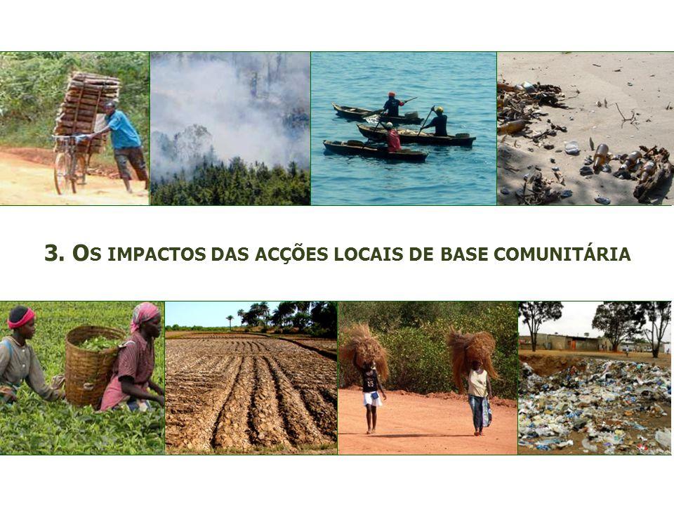 3. O S IMPACTOS DAS ACÇÕES LOCAIS DE BASE COMUNITÁRIA