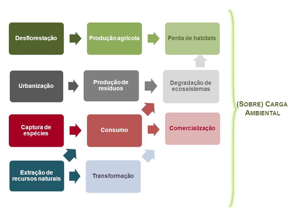 DesflorestaçãoProdução agrícolaPerda de habitats Captura de espécies ConsumoComercialização Extração de recursos naturais Transformação Urbanização Pr