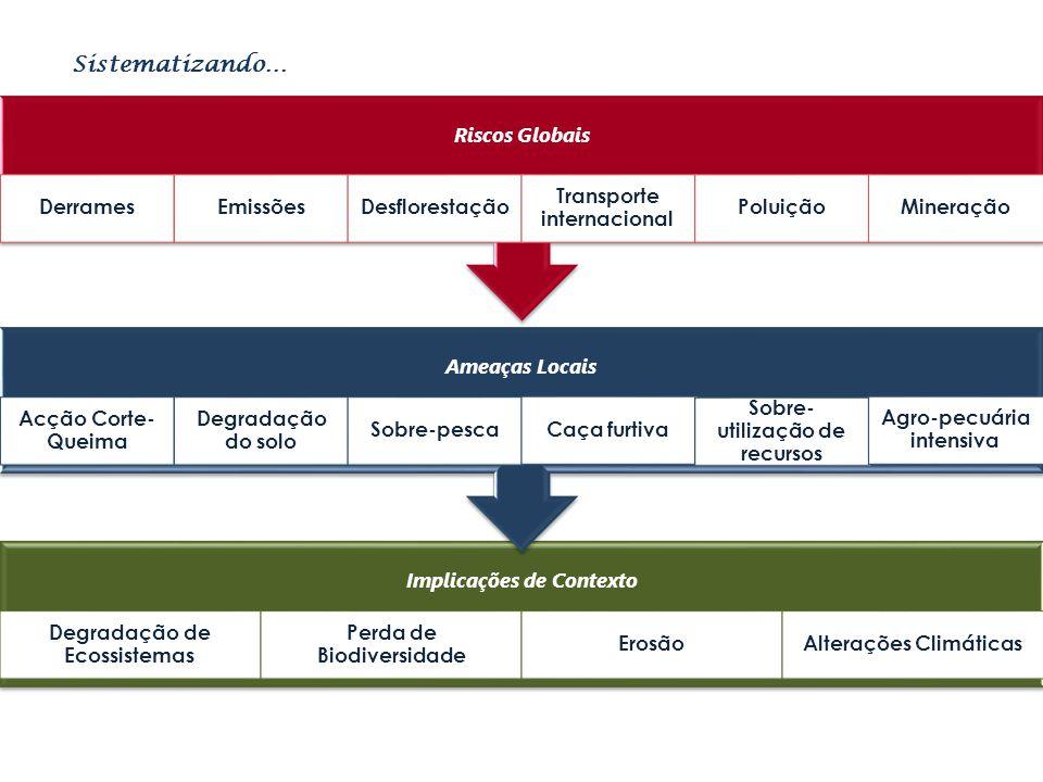 Sistematizando… Implicações de Contexto Degradação de Ecossistemas Perda de Biodiversidade ErosãoAlterações Climáticas Ameaças Locais Acção Corte- Que