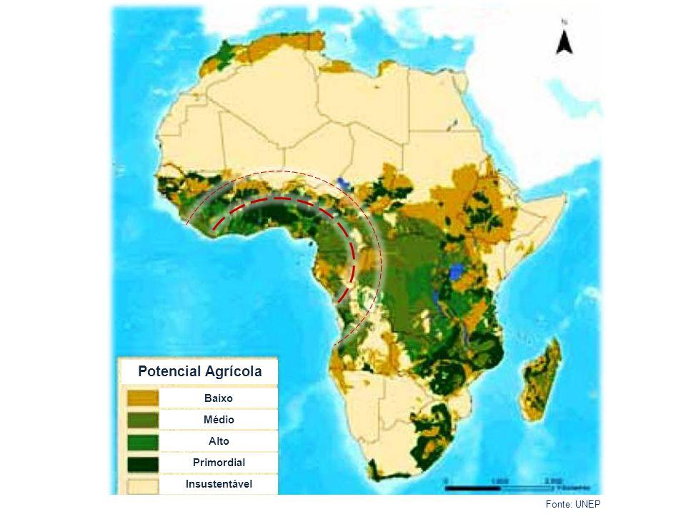 Taxa de Desflorestação (2000-5) Fonte: UNEP % de decréscimo da cobertura florestal por ano (2000-2005) > 1,5 1 - 1,5 0,5 - 1 0 – 0,5 < 0,1 Sem significado