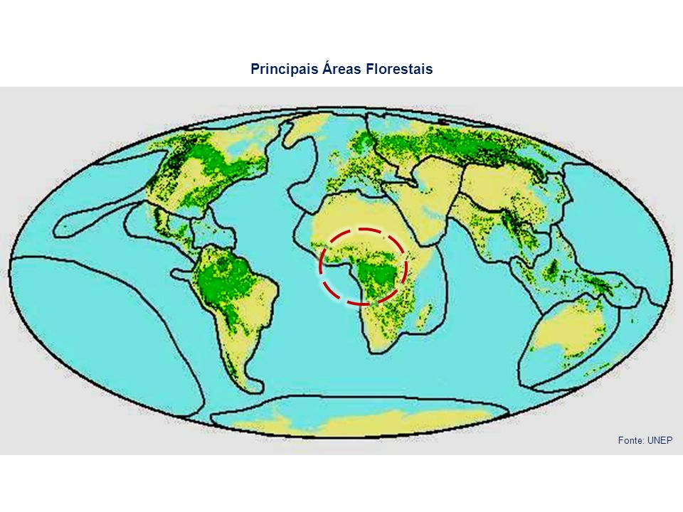 Principais pontos de referências de RECIFES DE CORAL Principais zonas de MANGAL Fonte: Conservation International